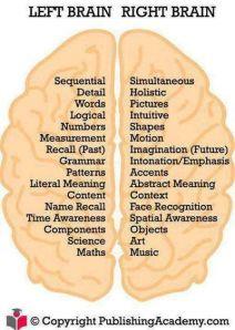 Left Brain-Rt Brain